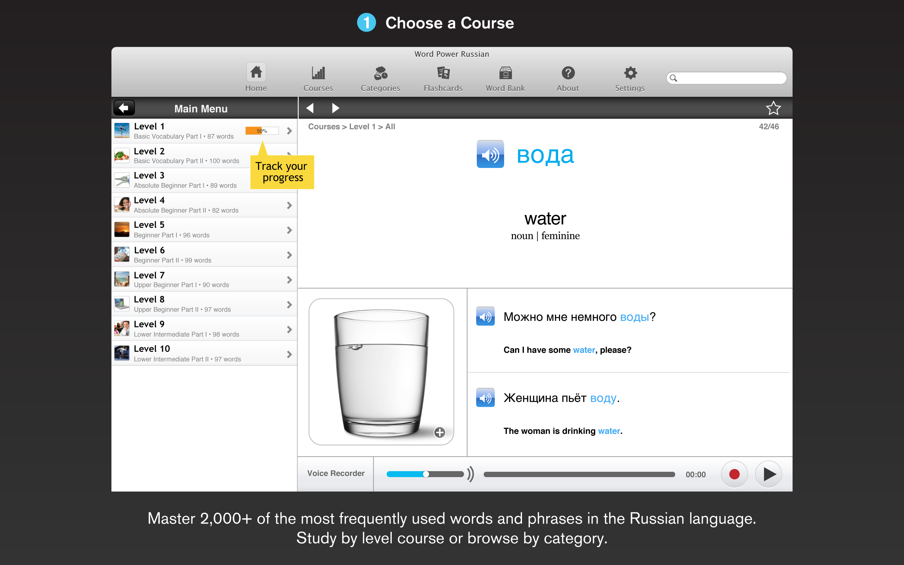 WordPower Russian for the Mac